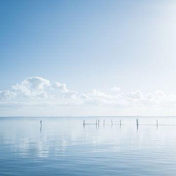 Niederländische Wasserlandschaft mit Spiegelung von Wolken und Polen. von MICHEL WETTSTEIN
