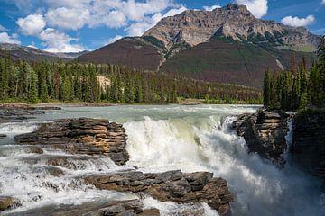 Athabasca Falls, Jasper National Park, Alberta, Canada van Alexander Ludwig
