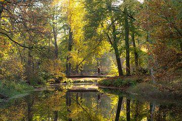 Kleine Brücke im Molenbosch-Zeist, Herbstfarben von Peter Haastrecht, van