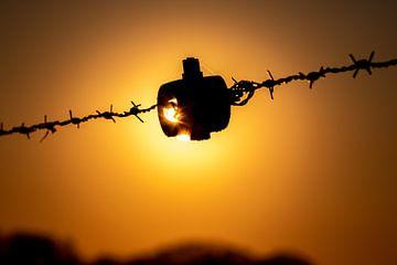 Barb wire, Schrikkeldraad, zonsondergang.