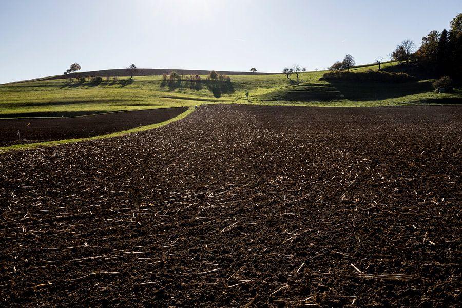 Glooiend landschap van Robert van Willigenburg