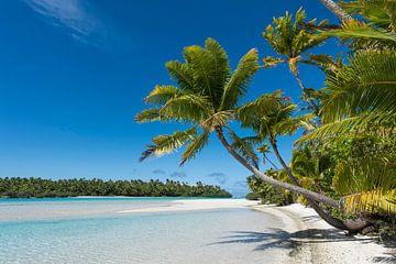 Paradies, Aitutaki von Laura Vink