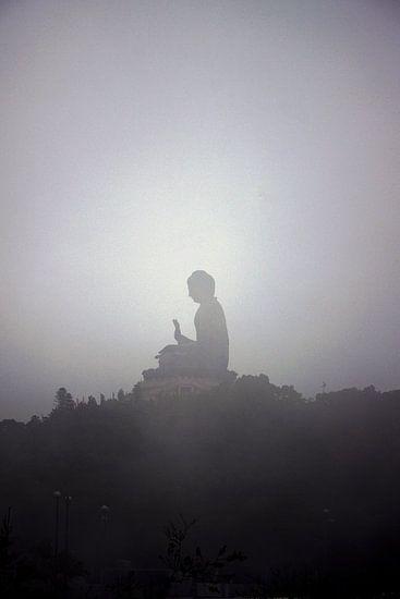Tian Tan Boeddha, Hongkong