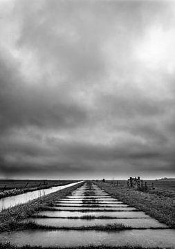 Betonweg in de polder van Pascal Raymond Dorland