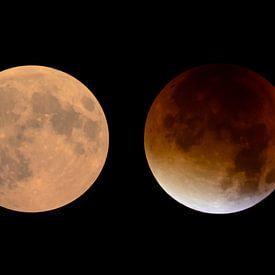 Mondfinsternis von Sjoerd van der Wal Fotografie