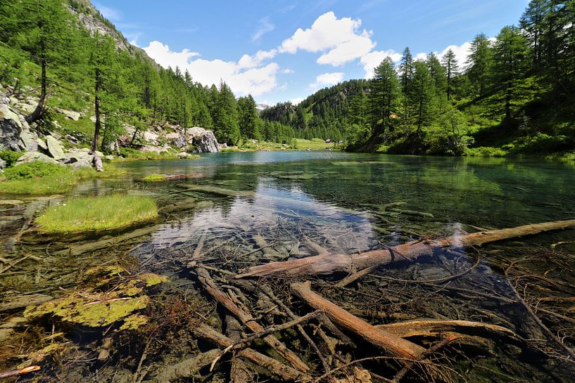 Lago delle Streghe - Piemonte - Italië van Felina Photography