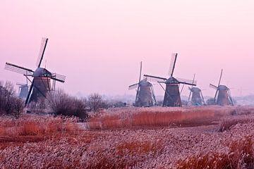 Traditionele molens op een koude winterdag bij Kinderdijk in Nederland von Nisangha Masselink