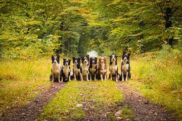 Groepsfoto Borderbende von Pieter Bezuijen