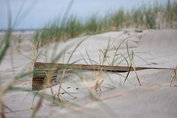 Unter dem Sand von Lianne van Dijk