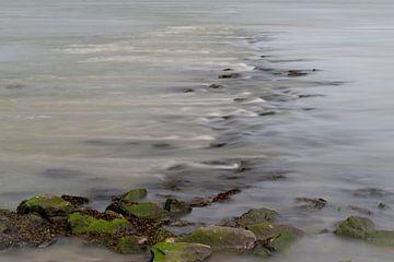 eau qui coule sur Leo Luijten
