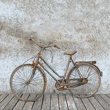 Roestige fiets van Steve Van Hoyweghen