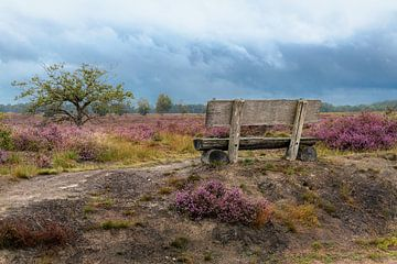 Voor de regenbui van Paul Lagendijk