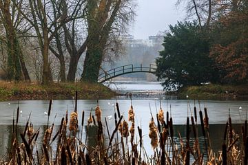 Voetgangersbrug in het Rivierenhof van Christel Stevens