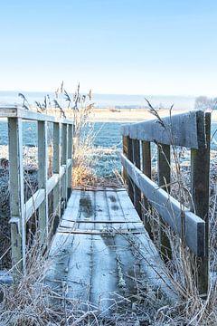 Brug naar de winter van Piertje Kruithof