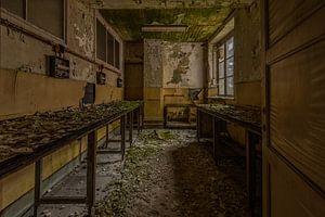 Toxic lab van serge baugniet