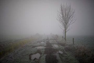 Mistig landschap met geheel eigen sfeer van Jenco van Zalk