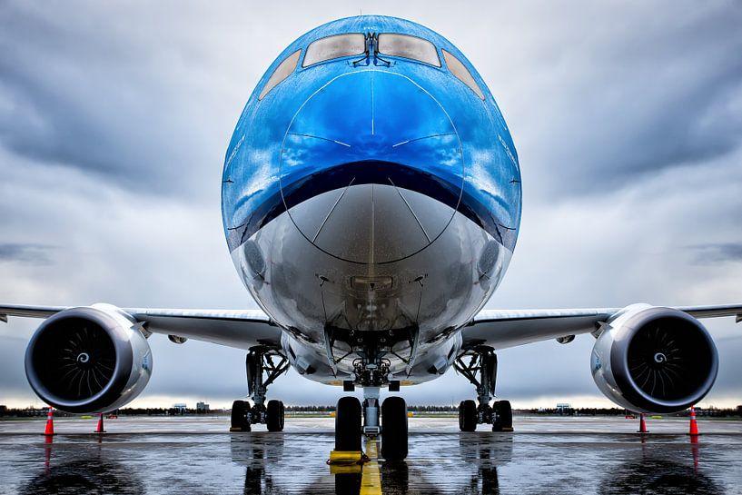 Symmetrie Boeing 787-9 Stijl van Dennis Janssen
