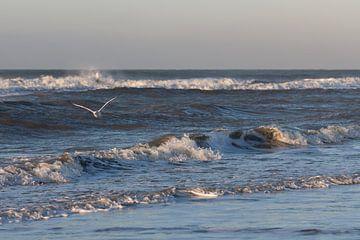 Noordzee von Lianne Hermans