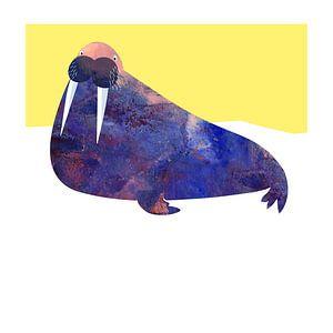 Walrus van