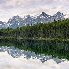Lake Herbert, Canada van Rens Piccavet