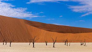 Dode vallei in Namibie