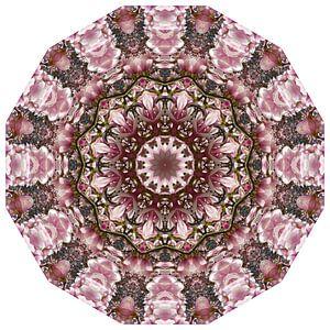 Pink spring blossoms 1.0, Nature Mandala