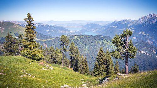 Uitzicht over het Meer van Annecy vanaf de La Sambuy in de Franse Alpen