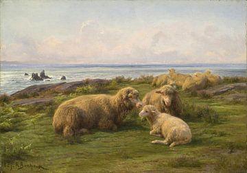 Mouton au bord de la mer, Rosa Bonheur sur