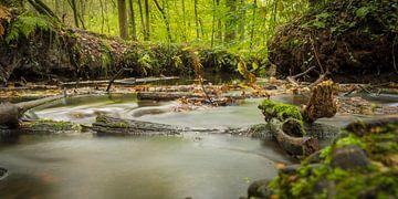 I follow river van Geert-Jan Timmermans