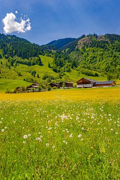 Frühling in Österreich von Henk Meijer Photography