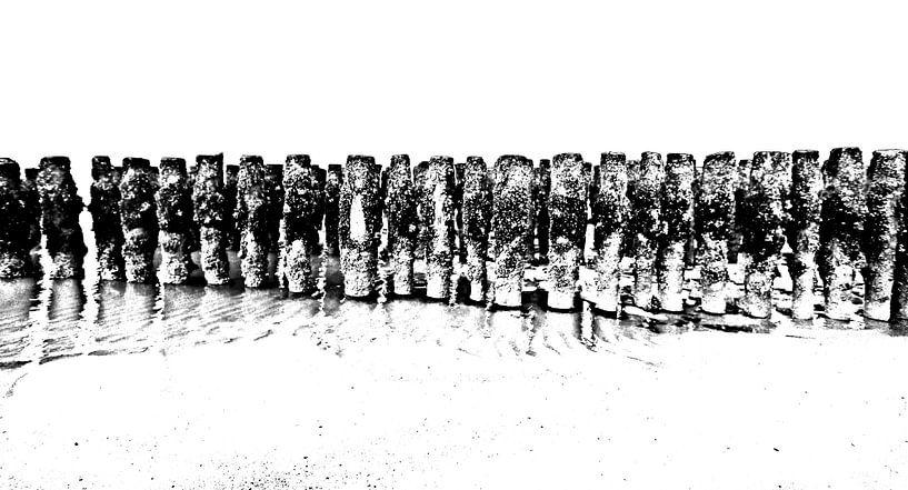 Aan de kust van Yvonne Blokland