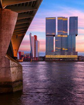 Der Rotterdam am Abend von der Eramus-Brücke aus gesehen