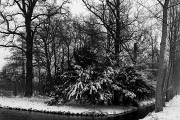Schwarz-Weiß-Fotografie einer Winterszene von Lieke van Grinsven van Aarle