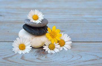 Zen-Steine mit Blumen von Trinet Uzun