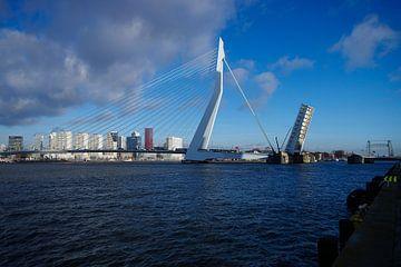 Erasmusbrug open van Jan Pott