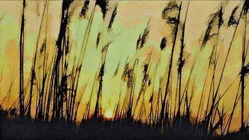 Abstrakt - Federn - Schilf - Gräser - Natur - Sonnenaufgang - Sonnenuntergang - Malerei von Schildersatelier van der Ven