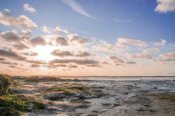 Natuurlijk strand van Dieter Rabenstein