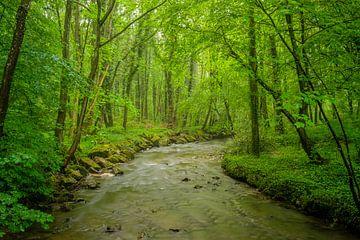 Eeuwige rivier van Emel Malms