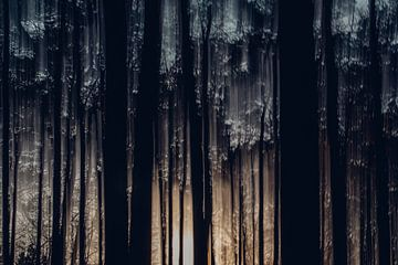 Schmelzende Bäume von Maarten Mooijman
