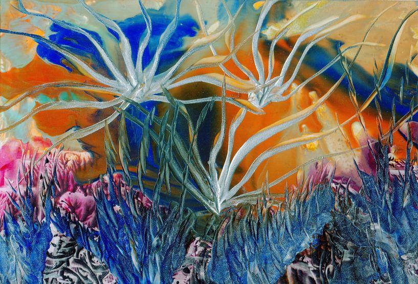 Mindful Colors 32 van Terra- Creative