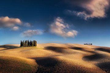 Typische Landschaft der Toskana mit Hügeln und Feldern im schönen Sonnenlicht von Fine Art Fotografie