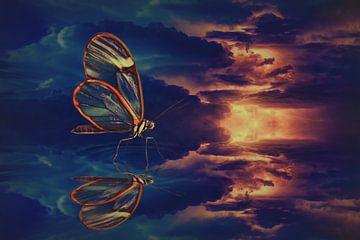 Papillon dans la tempête sur Elianne van Turennout
