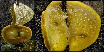 Plakjes citroen van Christine Nöhmeier