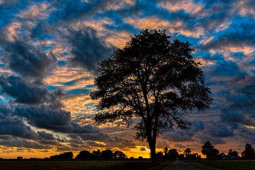 Sonnenuntergang in der niederländischen Landschaft