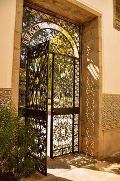 Sunny Door / Portugal van Sabrina Varao Carreiro