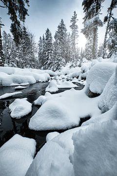 Snow von Marvin Schweer
