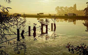 spiegeling in het water sur