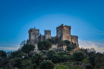 Medieval castle in Spain sur Sanne Lillian van Gastel
