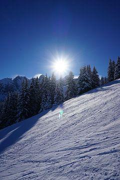 Besneeuwde bomen en een stralende zon achter de skipiste in Axamer Lizum (Tirol, Oostenrijk) van Kelly Alblas