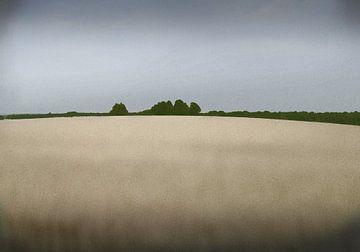 impressie van een zomer landschap van Henk Speksnijder